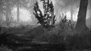 Dark-Light-Forest-Text-Intro-AfterEffectsTemplate-Studious31
